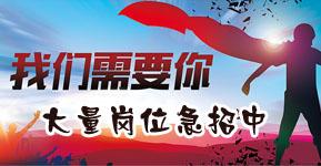 得力集团有限公司在宁海人才市场(宁海人才市场)的宣传图片
